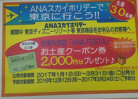 http://www.nakashibetsu-airport.jp/CHIRASHI_0333.jpg