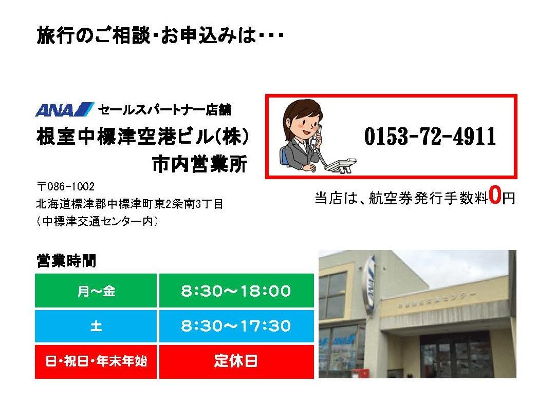 http://www.nakashibetsu-airport.jp/HP%E7%94%A8.jpg