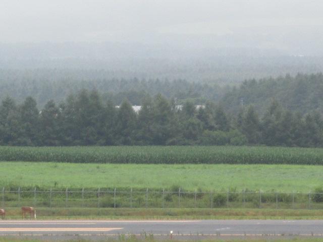 http://www.nakashibetsu-airport.jp/IMG_4901.JPG