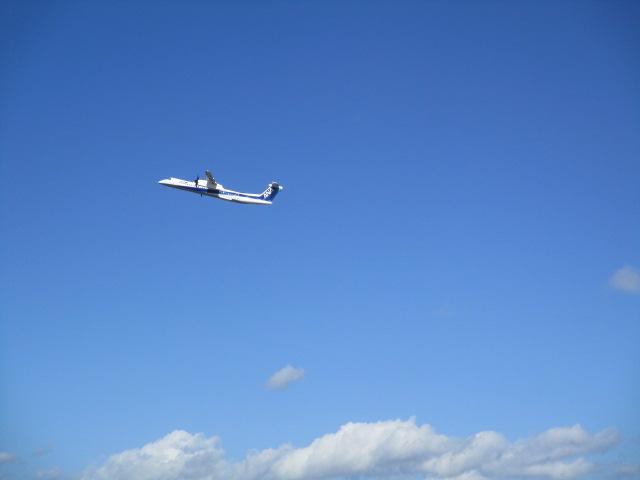 http://www.nakashibetsu-airport.jp/IMG_5633.JPG