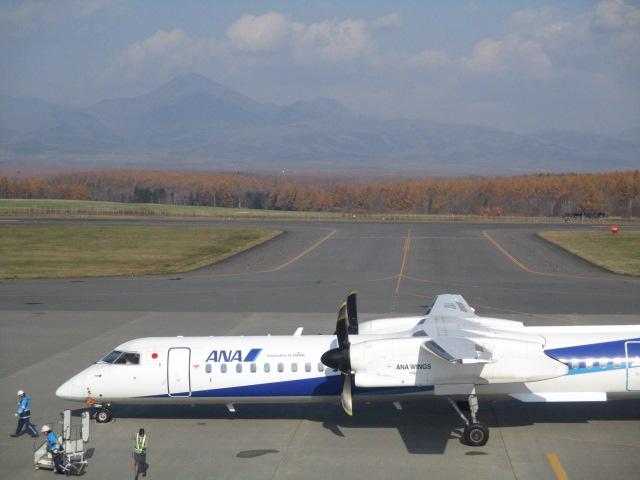 http://www.nakashibetsu-airport.jp/IMG_6090.JPG