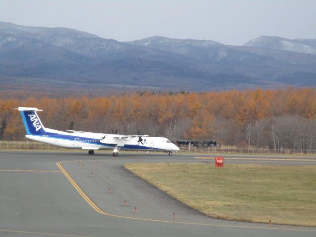 http://www.nakashibetsu-airport.jp/IMG_6116.JPG