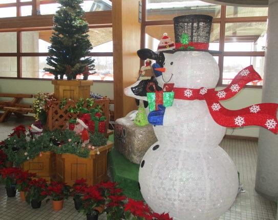http://www.nakashibetsu-airport.jp/IMG_6412.JPG