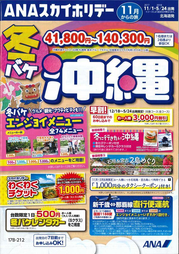 冬バケ 沖縄.jpgのサムネイル画像