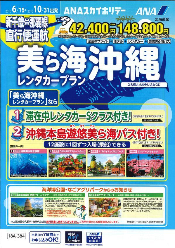 美ら海沖縄レンタカープランjpg.jpg