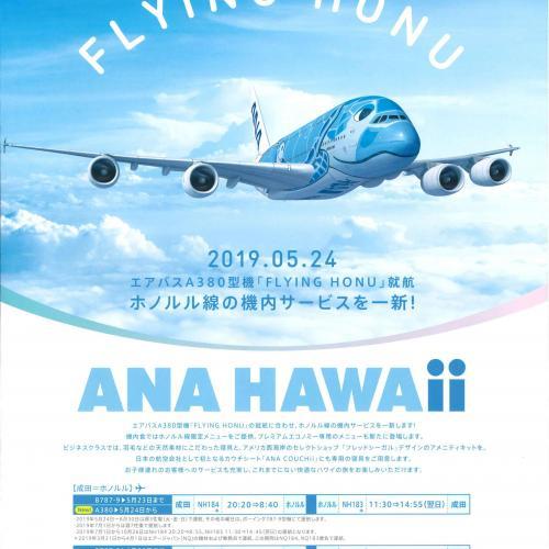 FLYING HONU 運航開始!