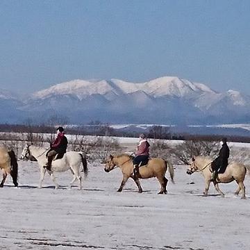 乗馬 Horseback rading in Nakashibetsu