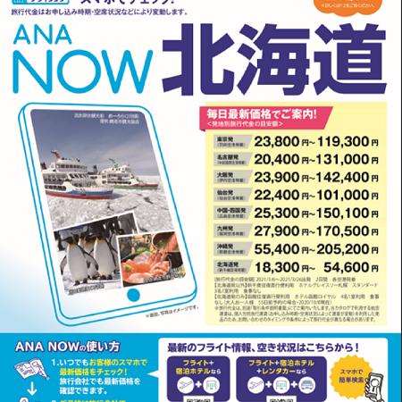 新着ANA NOWパンフレット紹介!