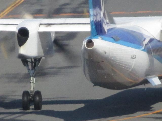 http://www.nakashibetsu-airport.jp/cde%20%282%29.JPG