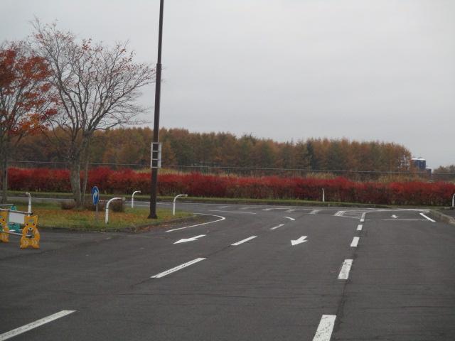 http://www.nakashibetsu-airport.jp/erdfs%20%282%29.JPG