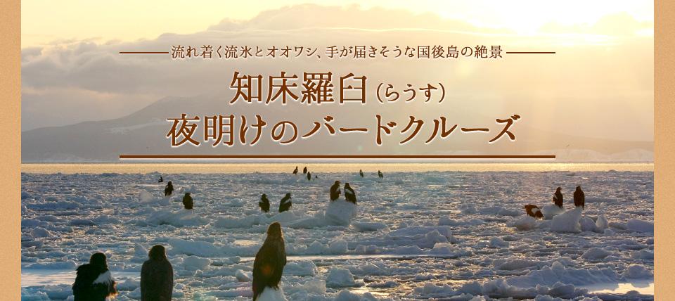 http://www.nakashibetsu-airport.jp/img_journey02.jpg