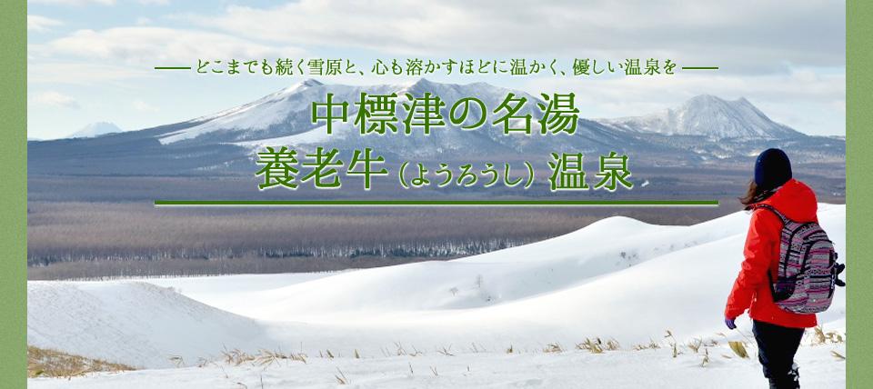 http://www.nakashibetsu-airport.jp/img_journey03.jpg