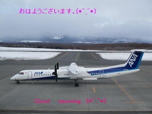 http://www.nakashibetsu-airport.jp/njy.JPG