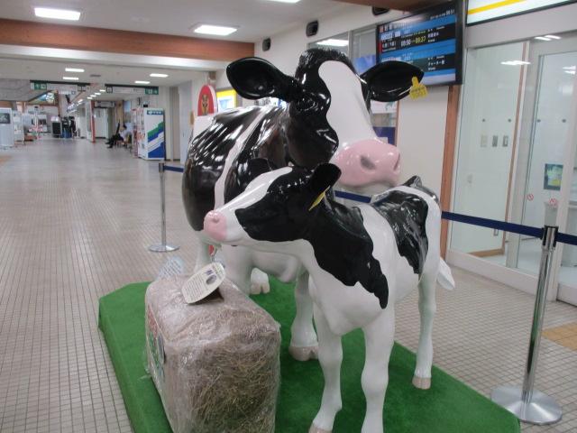 http://www.nakashibetsu-airport.jp/ttrewsa%20%281%29.JPG